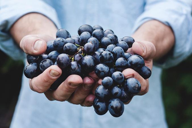 grapes-1461855048-85