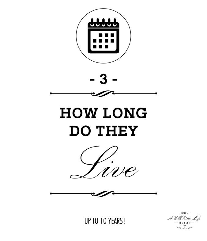 a-well-run-life-infograph-03