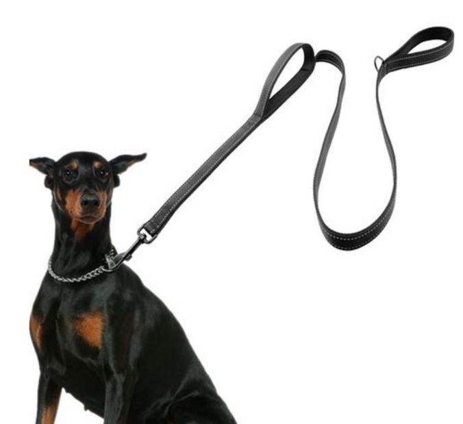 double-handled-leash